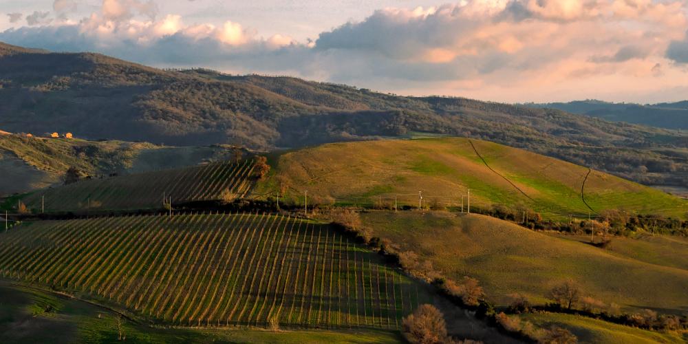 Cinigano Maremma Tuscany