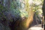 sentieri-castell'azzara-thumbnail