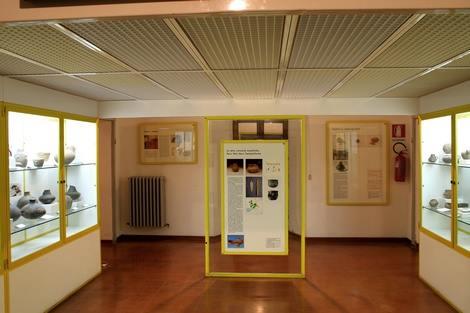 manciano museo preistoria