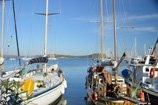 sailing-thumbnail