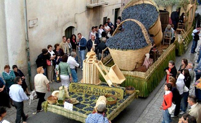 Festa Dell'uva Scansano Maremma Tuscany