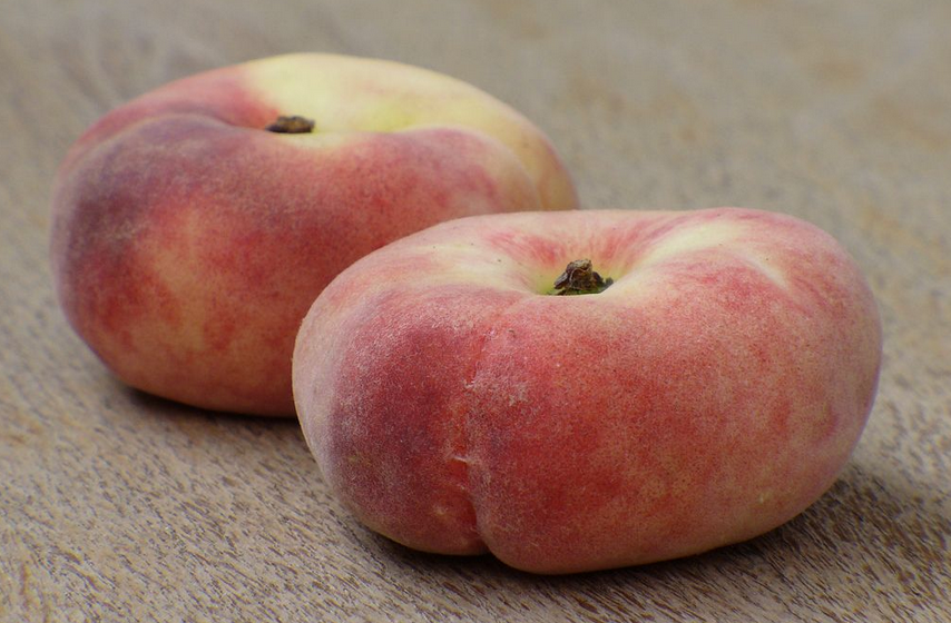 saturnia peach maremma tuscany