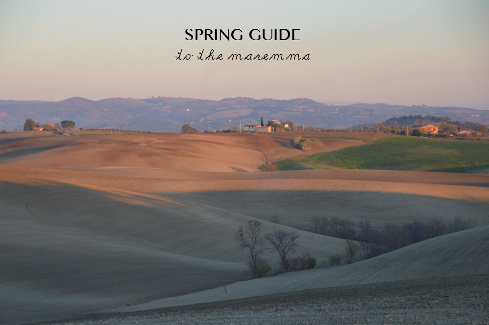 spring-guide-